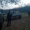 Şase metri cubi de lemn confiscat de jandarmi pe raza comunei Ibăneşti