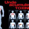 Cum știi când organismul tău e încărcat de toxine