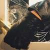 Spargere la o școală! Suspectul prins de polițiști după ce a furat un laptop dintr-o sală de clasă