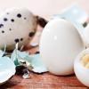 Cum se ține cura cu ouă de prepeliță