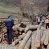 Agent economic amendat cu 10.000 de lei pentru comerţ fără a întocmi şi elibera documente justificative
