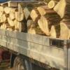 Material lemnos confiscat de poliţişti. Un sucevean a fost amendat cu 500 de lei