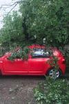 Vijeliile şi grindina fac ravagii: Acoperișuri luate de vânt, drumuri blocate, un copac a căzut peste o maşină la Dorohoi - FOTO