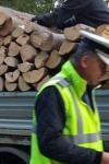 Transport ilegal de lemn, depistat de polițiști în Dorohoi! Șoferul a fost sancționat și marfa confiscată