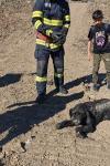 Câine blocat în mâl salvat de pompierii din Dorohoi - FOTO
