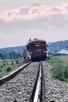 Trenul Interregio Dorohoi-Iași a deraiat după ce o vacă a sărit pe șine
