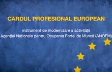 Comunicat de presă AJOFM Botoșani - Cardul Profesional European 2 vine în sprijinul activităţii SPO