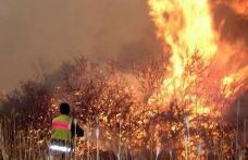 Început de aprilie incendiar pentru pompierii botoșăneni