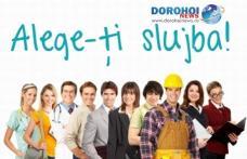 Locuri de muncă vacante anunţate de AJOFM Botoşani! Pentru Dorohoi doar un post cu studii medii