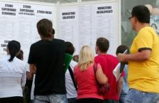 Deputaţii îi pun la muncă pe șomeri. Vor avea contract de muncă şi vechime