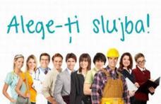 Peste 450 locurile de muncă vacante, anunţate de AJOFM Botoşani!