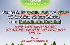România prinde rădăcini și în Dorohoi
