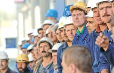 AJOFM Botoșani anunță peste 430 de locuri de muncă. Vezi oferta!