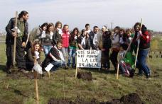 "IMPORTANT! : Astăzi la SomaxTV ""TE IUBESC DOROHOI"" –  ""România prinde rădăcini"""