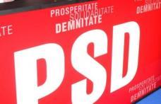 Buletinele de vot pentru alegerea preşedintelui PSD au fost tipărite şi trimise în judeţe