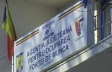 Nu ai un loc de muncă? AJOFM Botoșani oferă aproximativ 400 de locuri de muncă în Portugalia