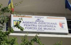 Aproximativ 7.000 de persoane aflate în căutarea unui loc de muncă înregistrate în evidenţele AJOFM Botoșani