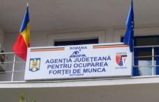 """AJOFM Botoşani organizează Seminarul cu tema: """"Viitorul tău e în mâinile tale""""! Află detalii"""
