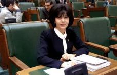 Federovici acuză PDL-PNL că acționează separat în Parlament pentru drumul Botoșani-Târgu Frumos