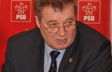 Senatorul Gheorghe Marcu   Declaraţia de presă cu privire la eutanasierea câinilor comunitari