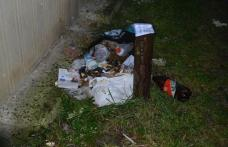 Primim la redacție: Unii cetățeni ai municipiului umbresc eforturile făcute de autoritățile locale - FOTO