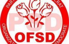 Simpozion organizat de Femeile Social Democrate dedicat Zilei internaţionale a Familiei