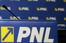 Doi liberali, printre care se află și un botoșănean, retrași de pe listele PNL din cauză că sunt anchetați de DNA