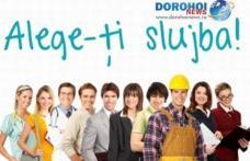 AJOFM Botoșani anunță locurile de muncă disponibile în această săptămână