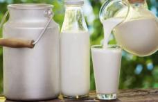 Cum ajunge laptele de la 80 de bani litrul la poarta fermei la 4 lei litrul în supermarket!