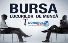 Bursa generala a locurilor de muncă organizată anul acesta în luna aprilie