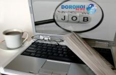 AJOFM Botoșani anunță locurile de muncă și programele de formare profesională disponibile