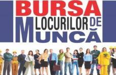 """AJOFM Botoșani anunță organizarea """"Bursei Generale a Locurilor de Muncă"""" – Află când se va desfășura și locația"""