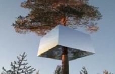 Un hotel inedit, cu camere suspendate în copaci, fascinează turiştii în Suedia