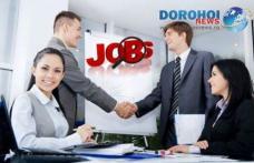 Află ce locuri de muncă sunt la dispoziţia şomerilor din judeţul Botoşani, în această săptămână!