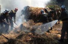 Depozit de furaje, distrus într-un incendiu produs în satul Ezer
