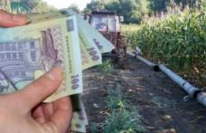 Atenție dorohoieni! Plata pentru acciza la motorina din agricultură începe luni. Află sumele și cine beneficiază!