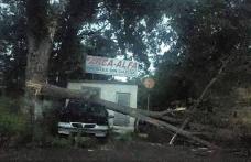 Ravagii făcute de furtună în Județul Botoșani. Case și curți inundate, mașini rămase în trafic la Dorohoi, copaci rupți