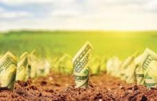 Anunțul directorului APIA pentru fermierii care așteaptă banii pe agromediu!