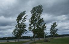 Meteorologii au emis un nou COD GALBEN pentru județul Botoșani!