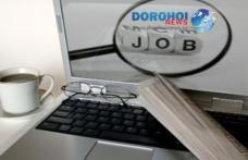 Aproape 500 de locuri de muncă sunt la dispoziţia şomerilor din judeţul Botoşani, în această săptămână!