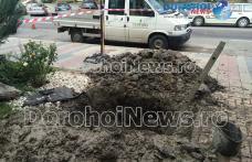 Avarie la conducta de apă pe strada Spiru Haret din Dorohoi. Vezi zonele afectate! - FOTO