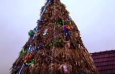 Vine din Moldova şi e cel mai neobișnuit brad de Crăciun: 100% tradiţional