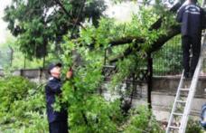 Efectele vântului puternic   30 de localităţi din judeţul Botoşan