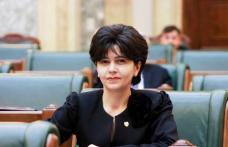 Senatorul Doina Federovici membru în comisia de verificare a SRI, după scandalul Coldea