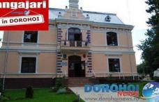 Primăria municipiului Dorohoi scoate la concurs noi locuri de muncă. Vezi detalii!