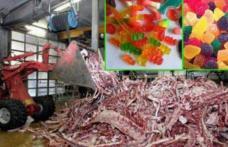 Filmuleţul de groază care arată cum sunt fabricate jeleurile din comerţ - VIDEO