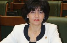"""Doina Federovici: """"Fondul Suveran de Dezvoltare și Investiții va fi principalul motor de atragere a investițiilor în România"""""""