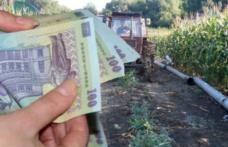 """Trufin: """"Guvernul a adoptat măsurile prin care fermierii pot accesa credite de dezvoltare cu garanții de stat de 80% din valoarea împrumutului"""""""