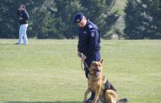 Exerciţiu demonstrativ efectuat de câinii Inspectoratului de Jandarmi Judeţean Botoşani