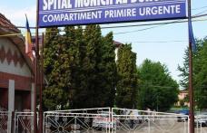 Două femei din Brăeşti au fost atacate de o scroafă